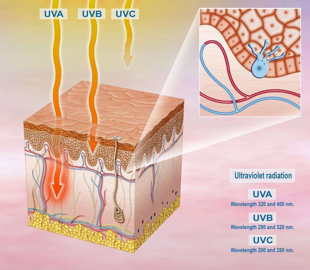 UVA UVB und UVC Licht